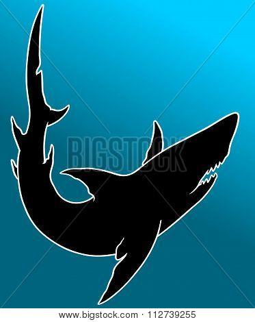 animal black art silhouette shark vector