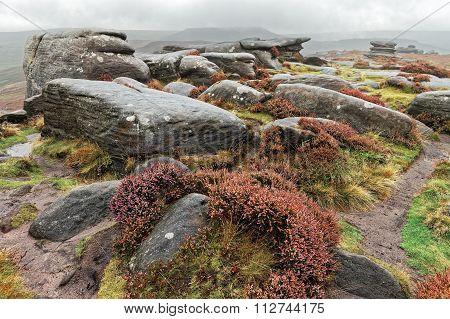 English moorland