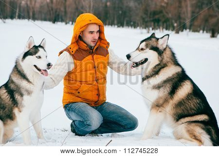 Man Walking With Dog Winter Time With Snow In Forest Malamute And Huskies Friendship