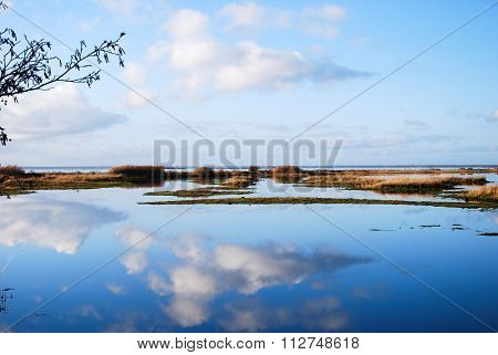 Cloud Reflections In Calm Water