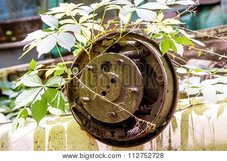Old Wheel In The Weeds