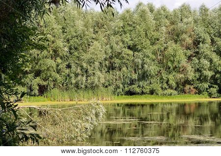A Small Lake In Tignes