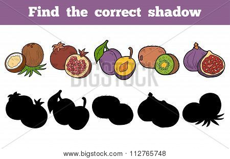 Find The Correct Shadow (fruits)