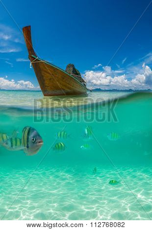 Split picture with fish and traditional longtail boat in Maya bay, Ko Phi Phi Le, Tailand