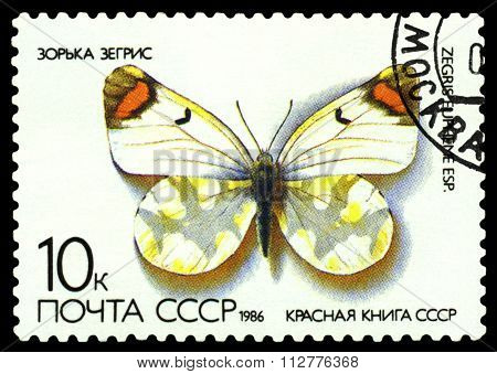 Vintage  Postage Stamp. Butterfly Papilio Alexanor.