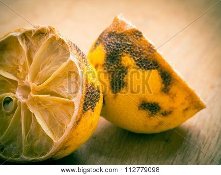 Closeup Old Rotten Lemon