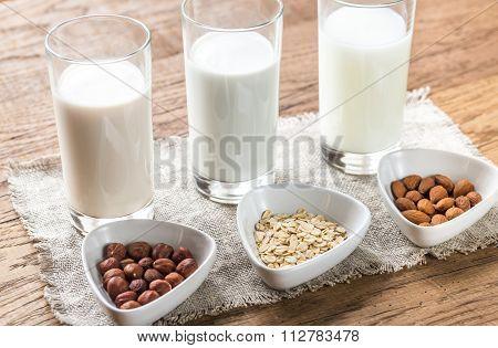 Different Types Of Non-dairy Milk