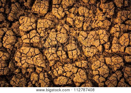 Cracked earth surface - abstract background