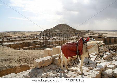 archeological site, Giza, Egypt