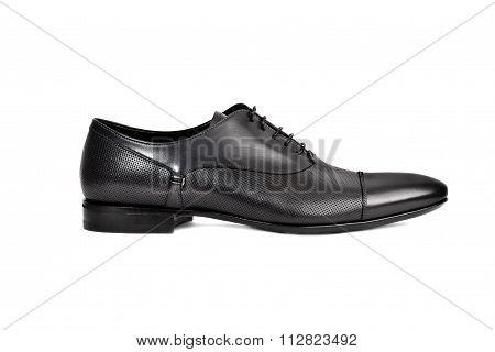 Dark Male Shoe
