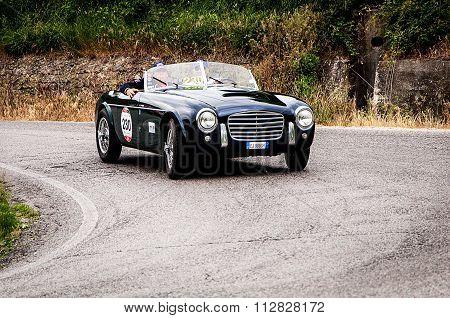 S.I.A.T.A. Daina Gran Sport Stabilimenti Farina 1952