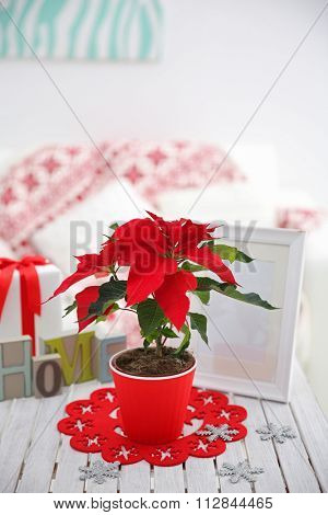 Christmas flower poinsettia and decorations on table with Christmas decorations, on light background