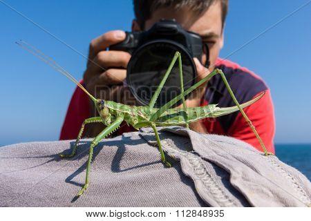 Big grasshopper and photographer