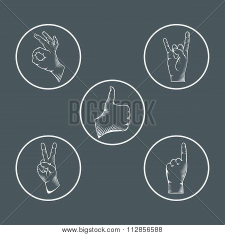 Set of hand gestures. Different gestures, signals and signs.