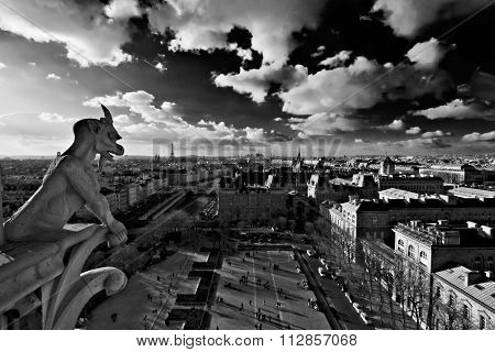 Black And White Panorama Of Paris Shot From Notre Dame Cathedral With A Stone Gargoyle In The Foregr