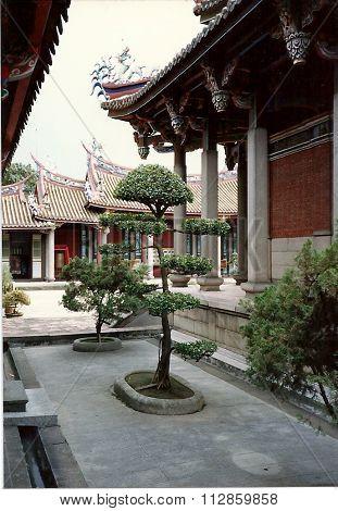 Bonsai Tree at Taipei Confucius Temple