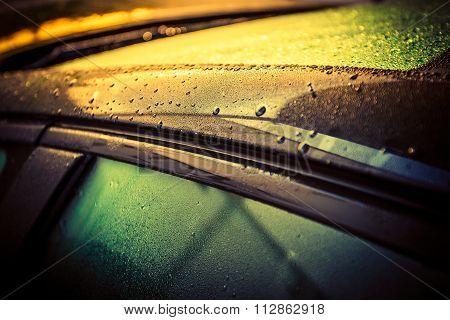 Car Body Waxing