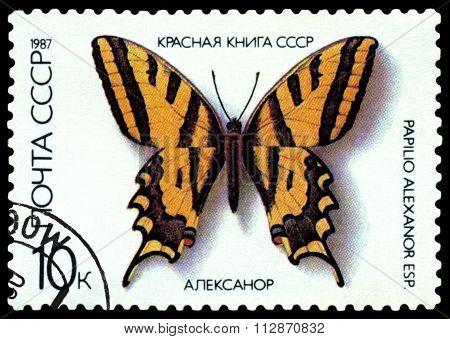 Vintage  Postage Stamp.  Papilio Alexanor.