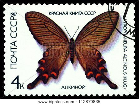 Vintage  Postage Stamp. Butterfly Atrophaneura Alcinous.