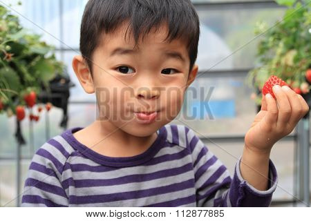 Japanese boy eating strawberry (4 years old)
