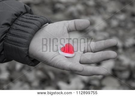 Heart peace in hands