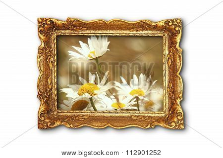 Beautiful Daisies In Old Painting Frame