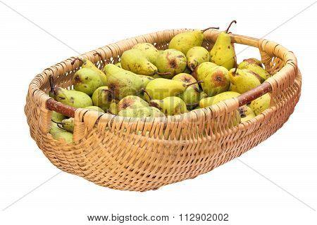 Wattle Basket Full Of Bio Pears