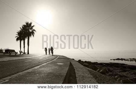 Sunny seaside landscape with bicyclists