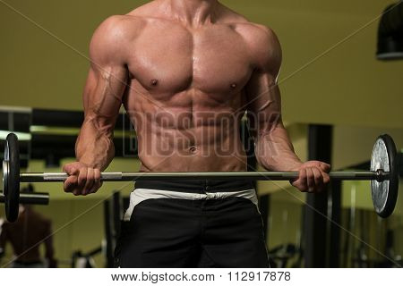 Muscular Man Exercising Biceps With Barbell