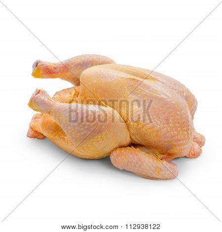 Corn-fed Chicken On White Background