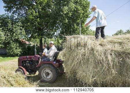 Hay. In The Summer On The Man With A Child Sitting On The Tractor And The Guy Puts The Hay In A Trai