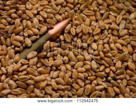 Cartridge Buried In Corn Crop As Hidden Danger Concept