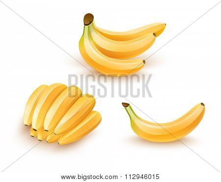 Set of isolated banana fruits. Vector illustration. Isolated on white background. Transparent objects used for lights and shadows drawing.