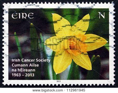 Postage Stamp Ireland 2013 Narcissus, Flower