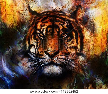 portrait Tiger face, profile portrait, on colorful abstract  background. Abstract color collage with