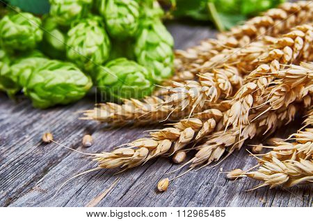 Wheat Ears And Fresh Hops On The Wooden Table