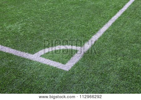 Green Grass Texture In Soccer Field