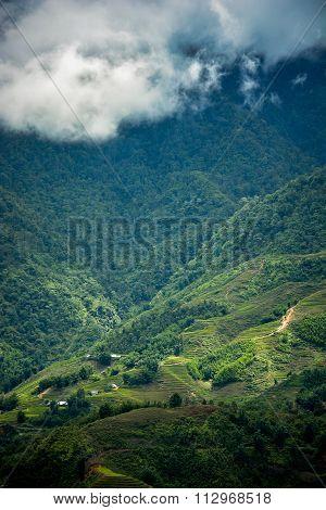 Beautiful Fansipan Mountain Landscape
