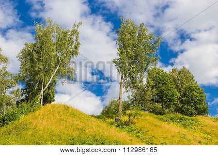 The nature of  Plyos: the trees stand on the hill and blue sky with clouds
