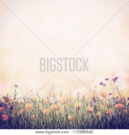 Vintage Background With Flower