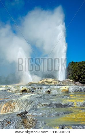 Te Horu, Pohutu and Prince of Wales Feathers geysers