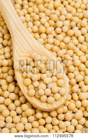 Spoon With Dry Soybeans