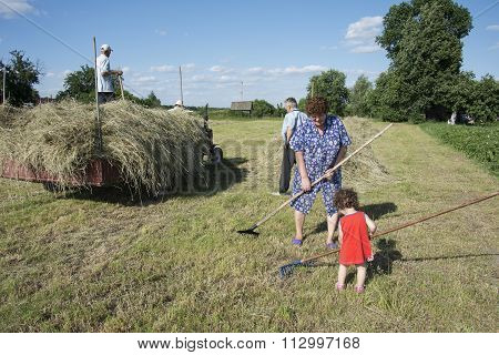 Summer  Little Curly Girl Helps Adults Raking Hay And Put It On The Tractor.