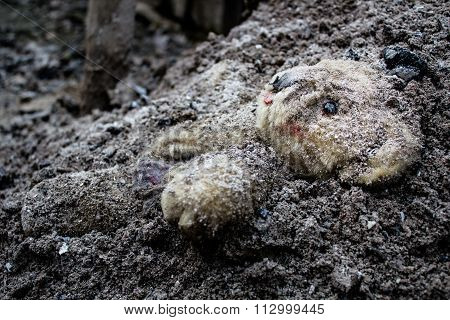 Teddy Bear Lies Lacerated And Covered By Ashes