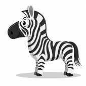 Постер, плакат: Cartoon Zebra vector