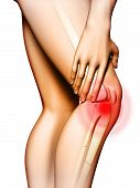 stock photo of knee  - Pain originating in the knee area - JPG