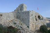 pic of saracen  - photo of nimrod castle located on golan heights israel - JPG