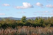 stock photo of hackney  - looking towards Dartmoor from Hackney Marshes - JPG