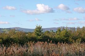 foto of hackney  - looking towards Dartmoor from Hackney Marshes - JPG