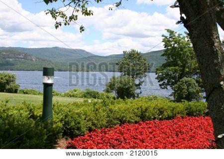 Poppies On Lake George
